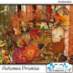 Autumns Promise Taggers