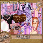FASHION DIVA KIT - TAGGER SIZE