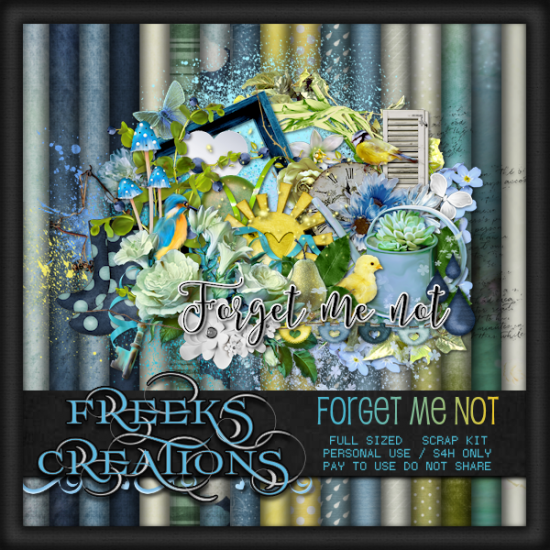 Forget Me Not - FS - Click Image to Close
