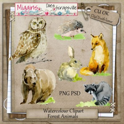 CU Hand Drawn Watercolour Clipart Forest Animals