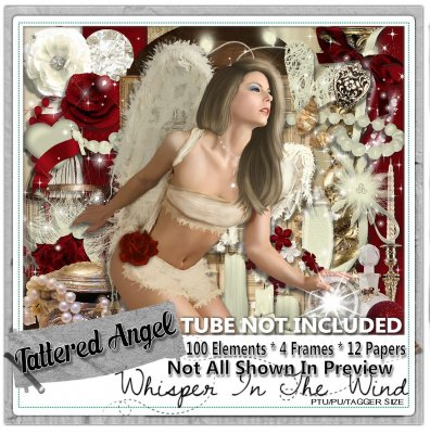 Tattered Angel - Match for Wendy G