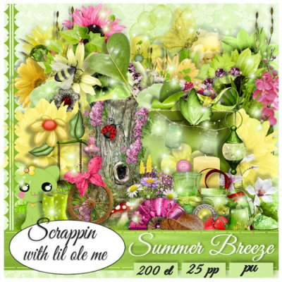 Summer Breeze Taggers Kit