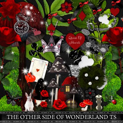 The Other Side Of Wonderland TS