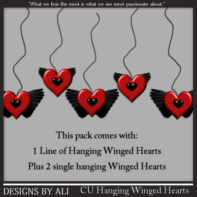 CU Hanging Winged Hearts TS