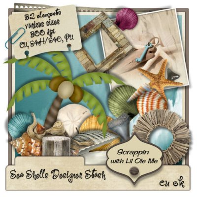Sea Shells Designer Stash